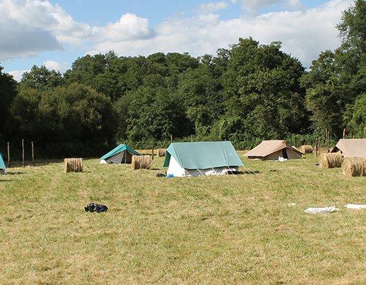 Peste porcine : restrictions pour les camps